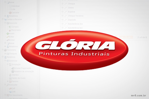 Desenvolvimento e Implantação de Sistema Administrativo e Financeiro para Pinturas Glória